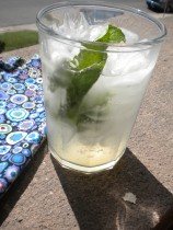 Sparkling water with lime_ Awesome